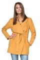 Dailus geltonas paltukas